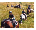 Irish Horse Riding Vacation Horse Trail