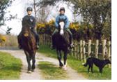 Irish Horse Riding Vacation Horse and Hound